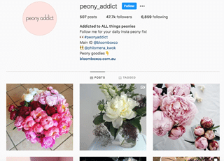 Side Instagram Account/Facebook group